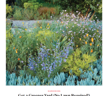 Real Simple ideas for making your garden more eco-friendly